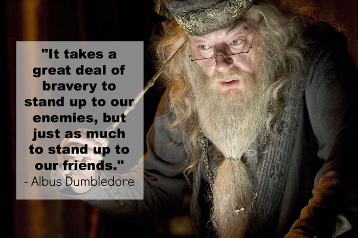 profound quotes from harry potter (9)
