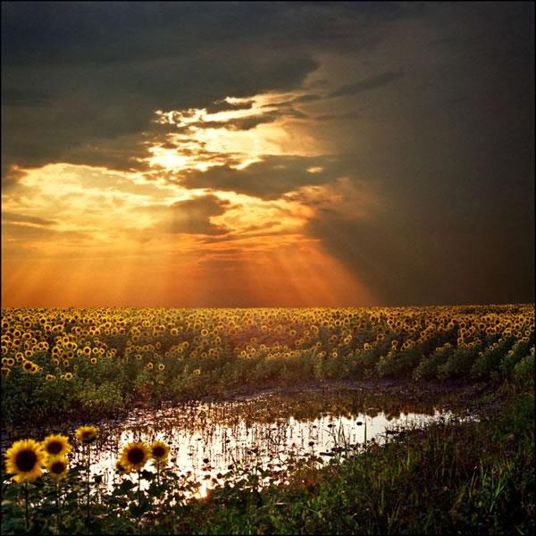 Amazing Landscape Photography Photos