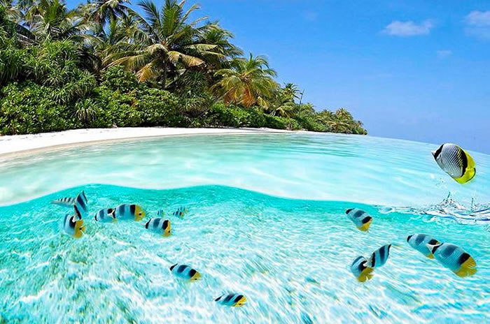 clearest waters to swim in before you die 2