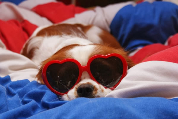 31. Heart sunglasses