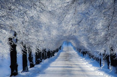 Grab Your Winter Coats And Take A Romantic Walk Along These Walkways