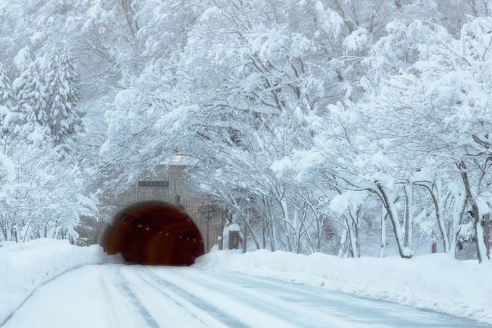 11. White road