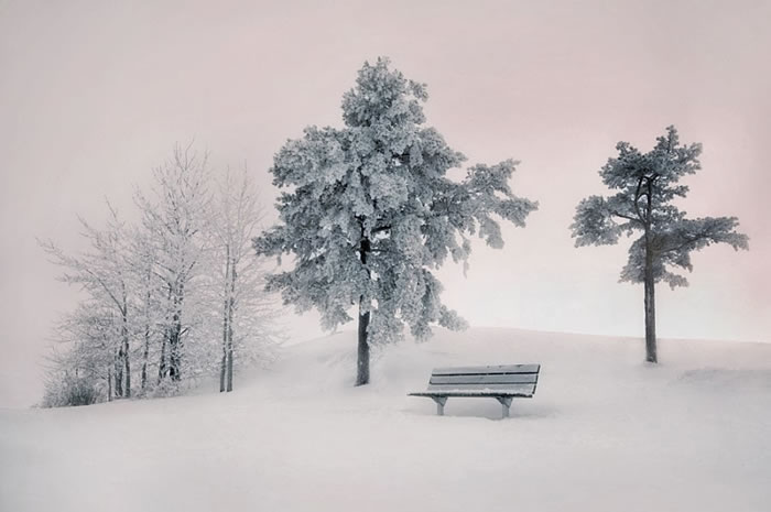 24. Silence by Mikko Lagerstedt