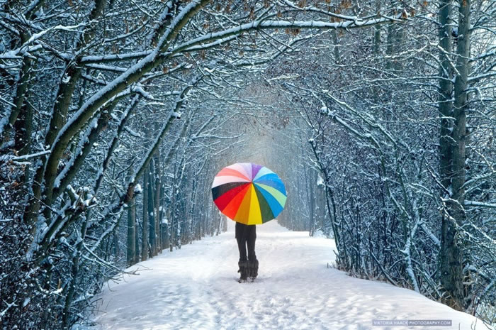 6. The silence of snow by Viktoria Haack