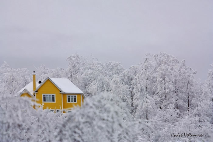 9. The yellow house