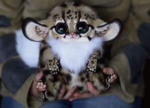 Animal-Baby-Dolls-So-Realistic-That-They-Are-Spooky