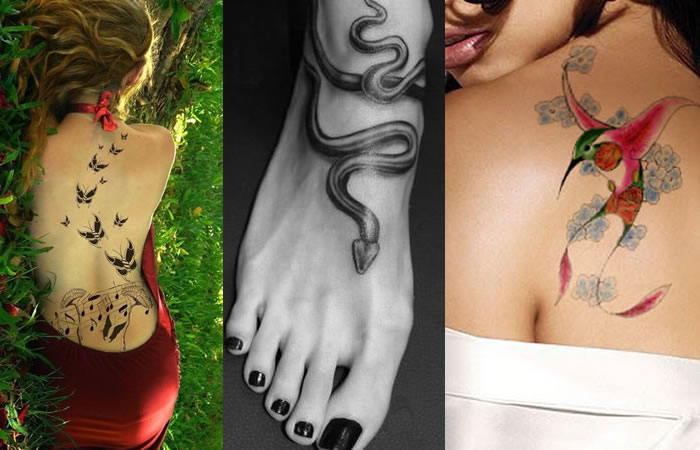 Animal Spiritual Meanings Of Female Custom Tattoos