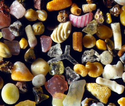 Discover Amazing Close Up shots Of Sand From A Digital Microscope Camera
