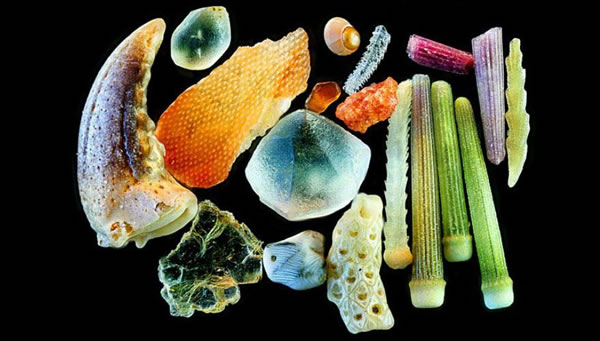 Discover Close Up shots Of Sand From A digital Microscope Camera 2