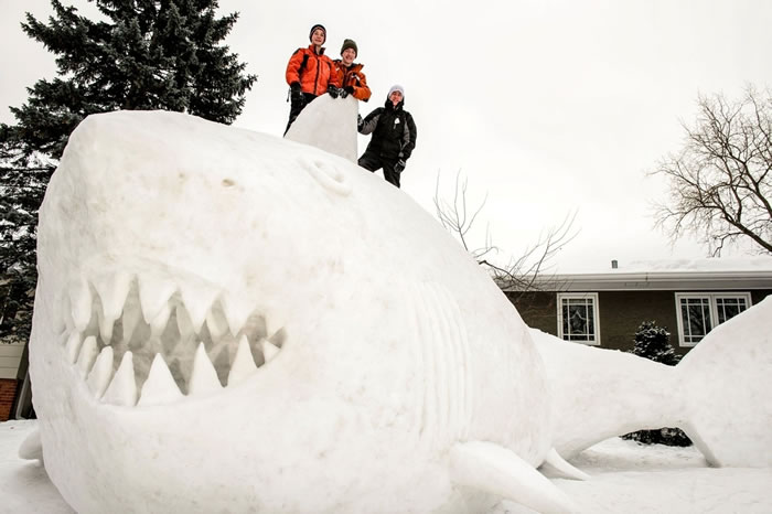 Minnesota Brothers Build Outdoor Sculpture Of A Great White Snow Shark 1