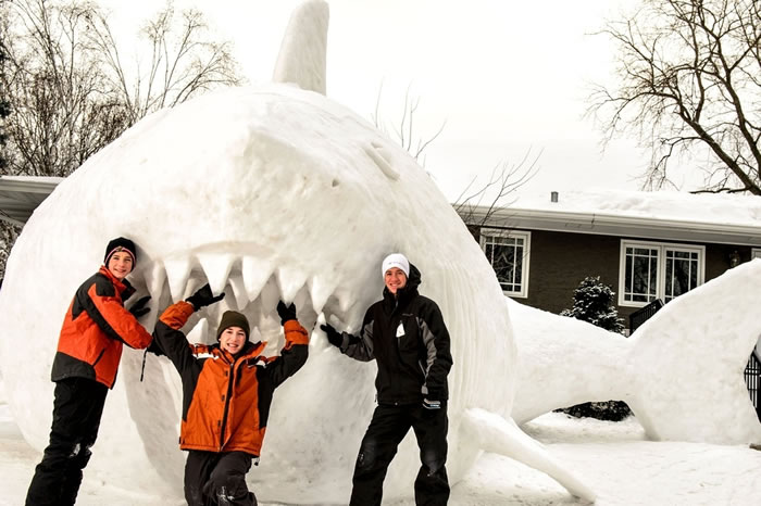 Minnesota Brothers Build Outdoor Sculpture Of A Great White Snow Shark 3
