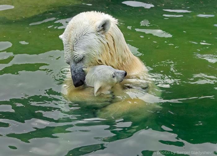 Tight hug by sergei gladyshev