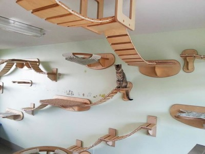 Transform Your Livingroom Into An Awesome Cat Playground