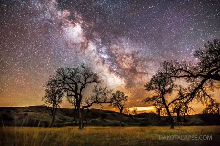 11. Cottonwoods and Milky Way by Randy Halverson