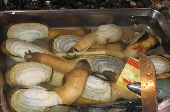 Buy Fresh Seafood In Asia And Get The Largest Clam In The World (5)