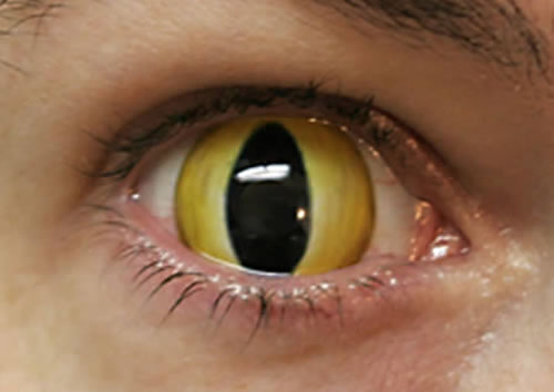 Crazy And Cool Contact Lenses That People Actually Wear 4