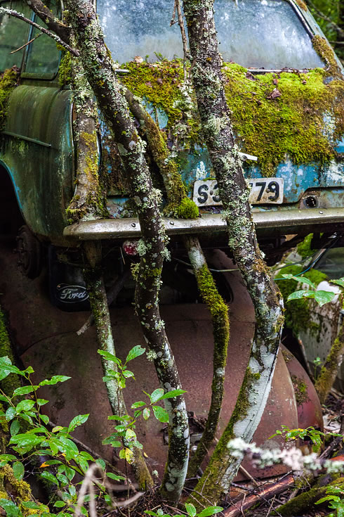 Eerie Classic Cars Graveyard At Abondaned Old Cars Junk Yard 10
