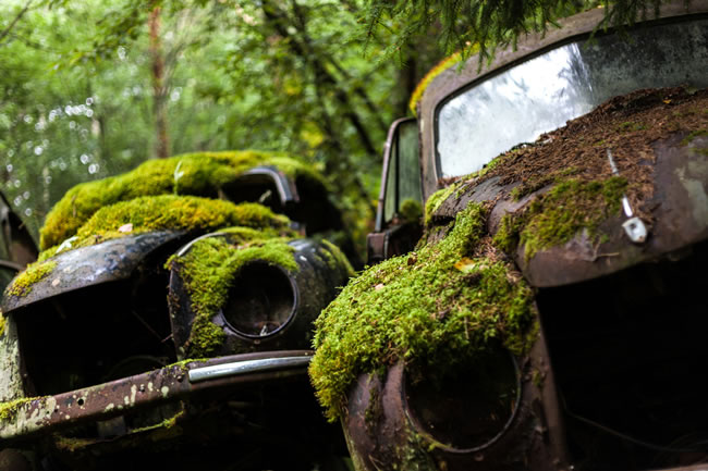 Eerie Classic Cars Graveyard At Abondaned Old Cars Junk Yard 12
