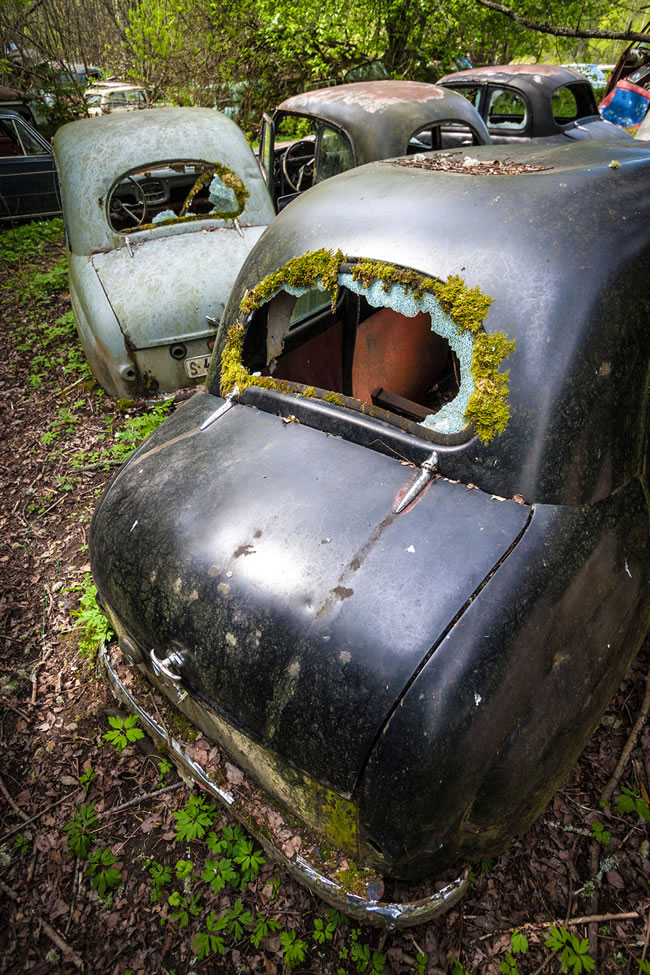 Eerie Classic Cars Graveyard At Abondaned Old Cars Junk Yard 15