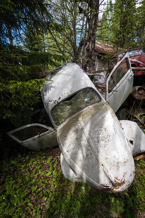 Eerie Classic Cars Graveyard At Abondaned Old Cars Junk Yard 9