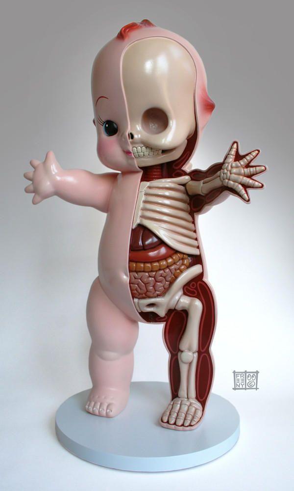 Bizarre 3d Anatomy Models Toys