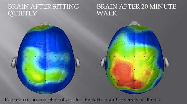 Did You Know Fitness Exercise can Make You Happier 2