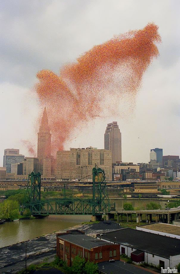1.5 Million Balloons Cleveland (2)