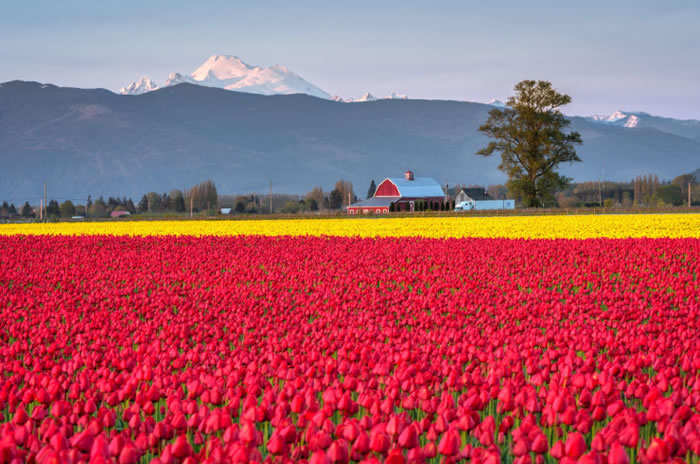 10 Spectacular Places To Visit During Spring Time 10