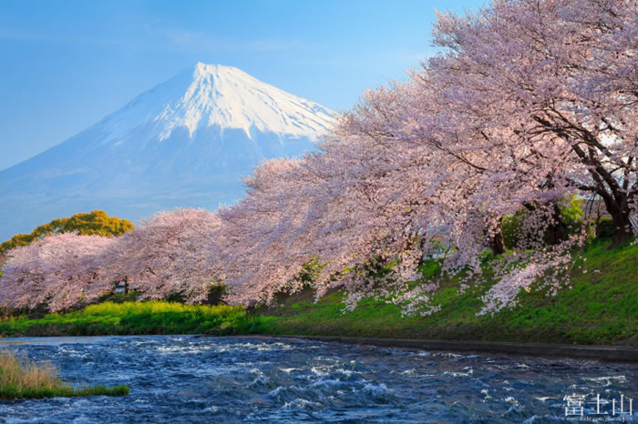 10 Spectacular Places To Visit During Spring Time 9