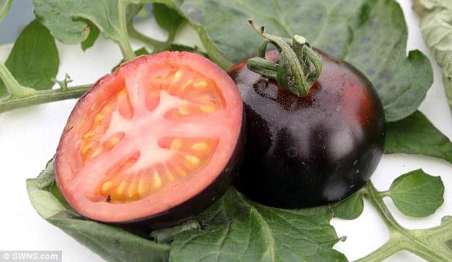Black Tomatoes (2)