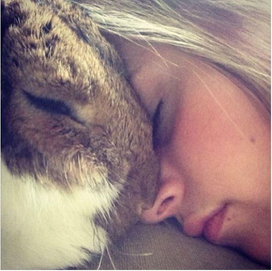 Cute Rabbits Sleepy Time 30 Adorable Snoozing Bunnies (10)