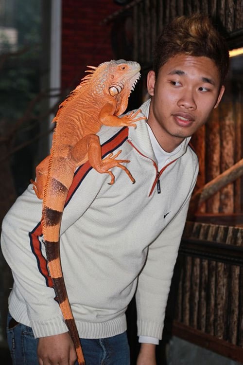 Enjoy a Coffee With Snakes And Scorpions At Vietnam's New Pet cafe 2