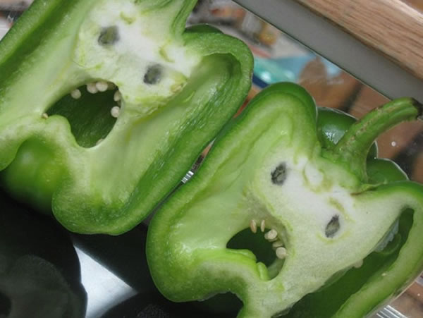 10 Funny Vegetables That Are Shaped Like Something Else 3