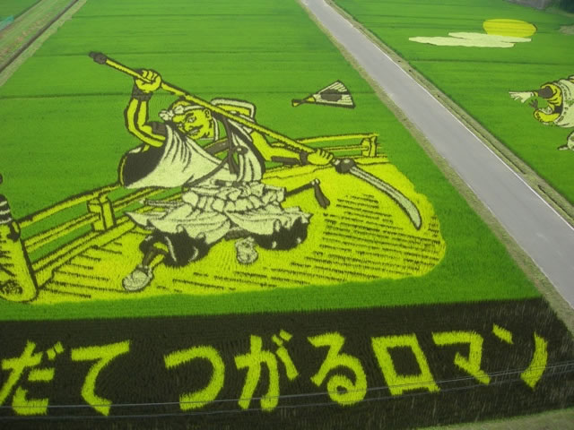 Fields Of Rice Turned Into Amazing Rice Paddy Art In Japan 1