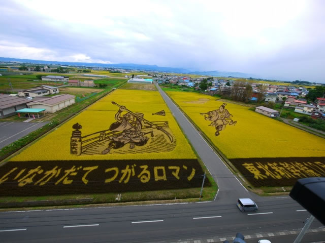 Fields Of Rice Turned Into Amazing Rice Paddy Art In Japan 3