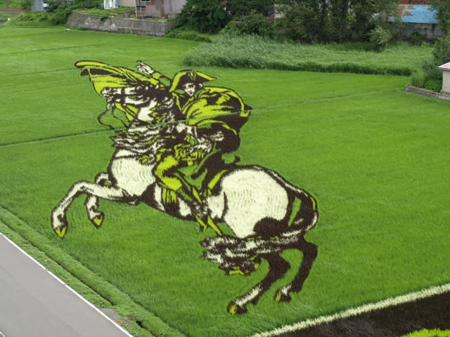 Fields Of Rice Turned Into Amazing Rice Paddy Art In Japan 6