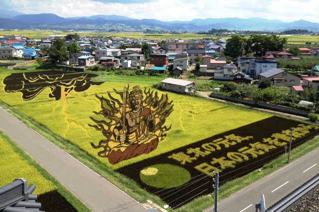Fields Of Rice Turned Into Amazing Rice Paddy Art In Japan 7