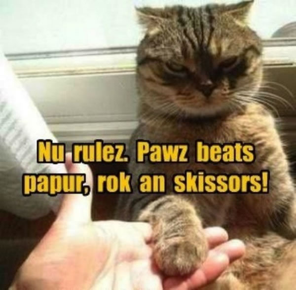 Photo Gallery Of Animals With Funny Captions 3