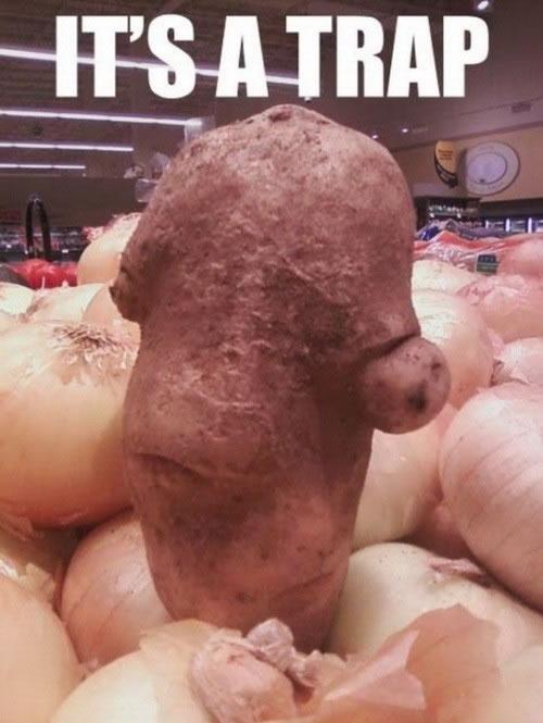 Potato Admiral Ackbar