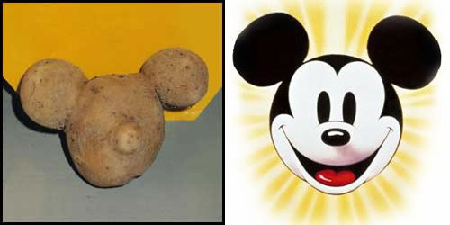 Potato Mickey Mouse