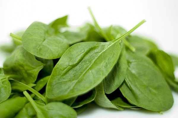 Spinach-Top-10-Healthy-Foods-List-To-Keep-You-Fit-And-In-Shape