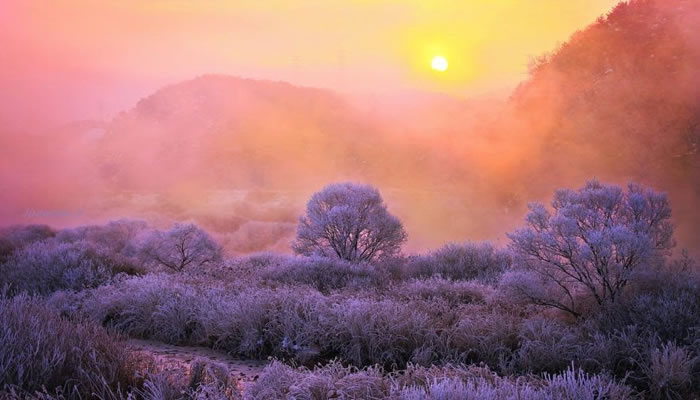 Amazing Photo Images Of Nature By Photographer Jaewoon U 10