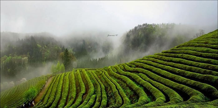 Amazing Photo Images Of Nature By Photographer Jaewoon U 14