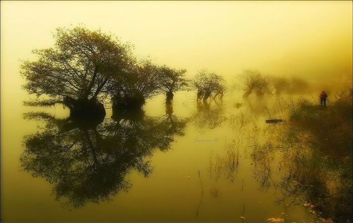 Amazing Photo Images Of Nature By Photographer Jaewoon U 15