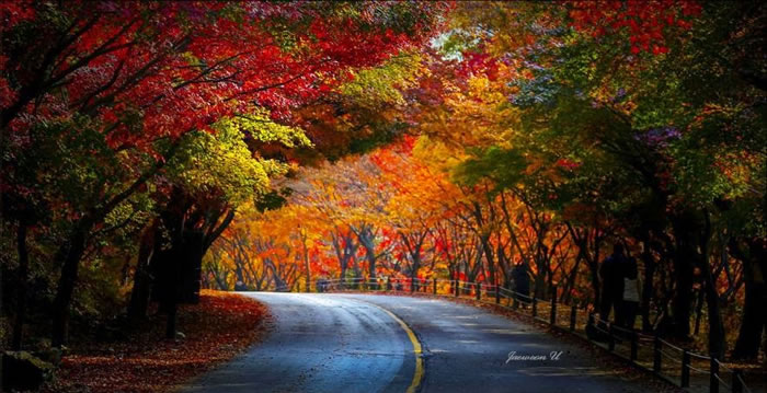 Spectacular Pictures Of Nature By Photographer Jaewoon U 5