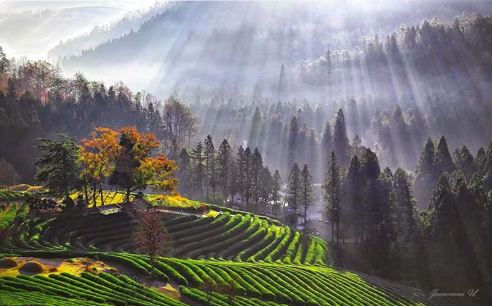 Spectacular Pictures Of Nature By Photographer Jaewoon U 6