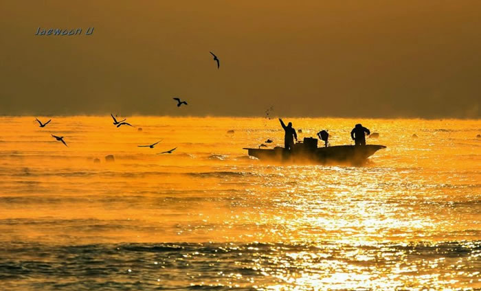 Spectacular Pictures Of Nature By Photographer Jaewoon U 7