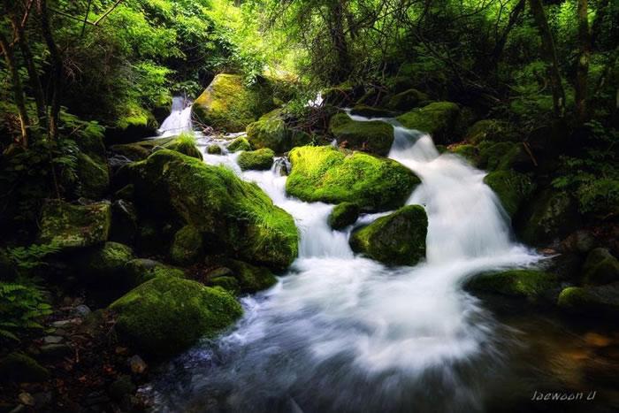 Amazing Photo Images Of Nature By Photographer Jaewoon U 8