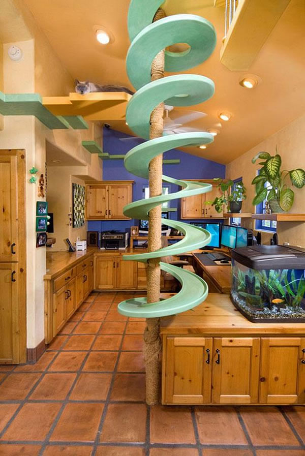 Guy Turns Home Into Cat Paradise With $35k Of Pet Products 1