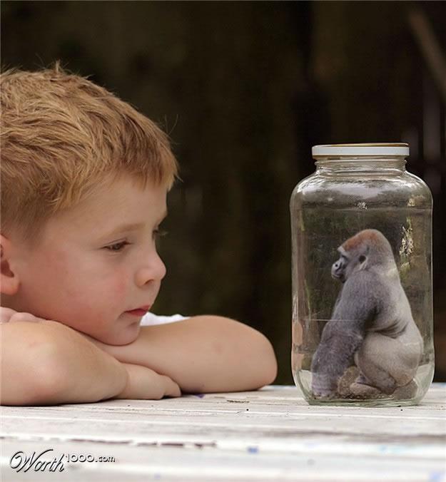 TOP Mutant Animals Photo Contest Entries (11)